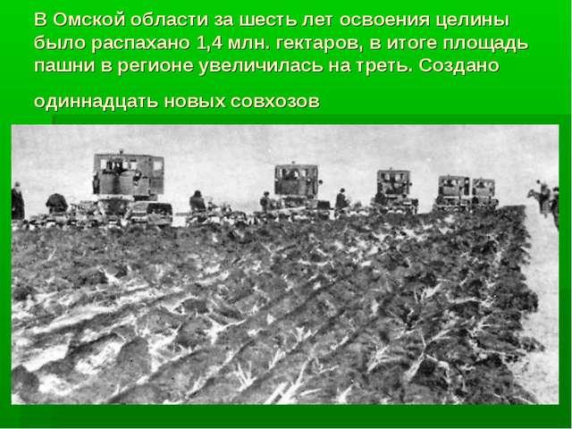 В Омской области за шесть лет освоения целины было распахано 1,4 млн. гектаро...