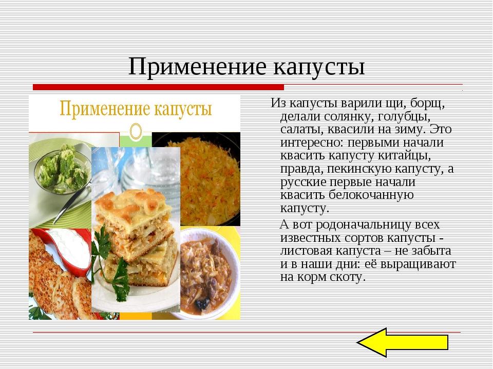 Применение капусты Из капусты варили щи, борщ, делали солянку, голубцы, салат...