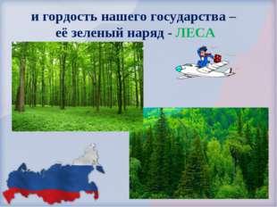 и гордость нашего государства – её зеленый наряд - ЛЕСА