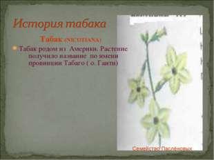 Табак (NICOTIANA) Табак родом из Америки. Растение получило название по имен