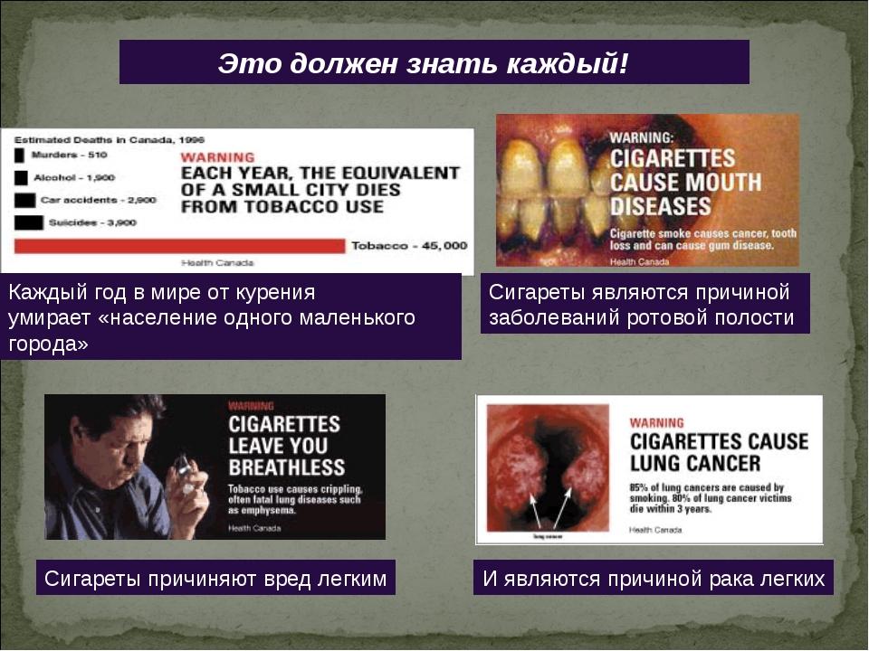 Это должен знать каждый! Каждый год в мире от курения умирает «население одн...