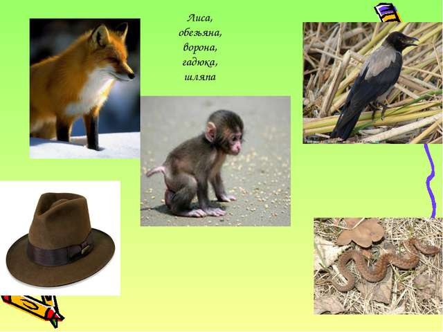 Лиса, обезьяна, ворона, гадюка, шляпа