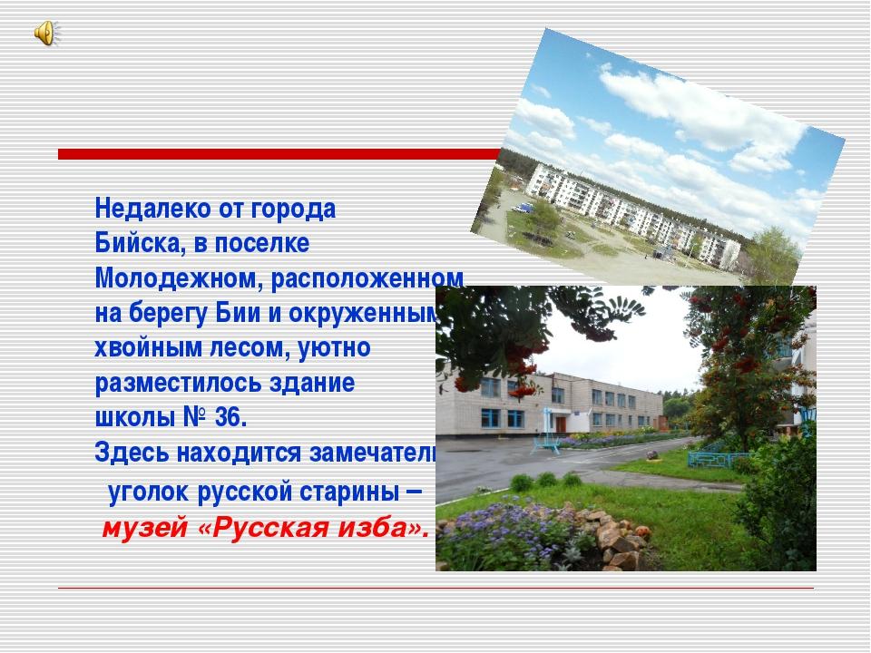 Недалеко от города Бийска, в поселке Молодежном, расположенном на берегу Бии...