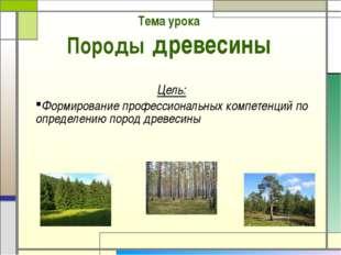 Тема урока Породы древесины Цель: Формирование профессиональных компетенций п