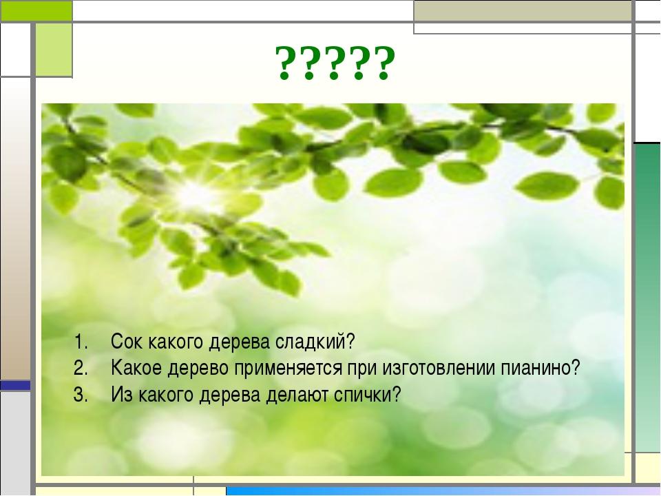 ????? Сок какого дерева сладкий? Какое дерево применяется при изготовлении пи...