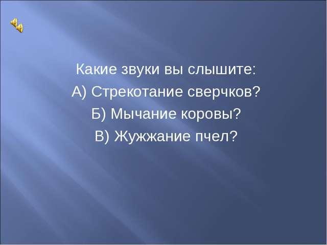 Какие звуки вы слышите: А) Стрекотание сверчков? Б) Мычание коровы? В) Жужжан...