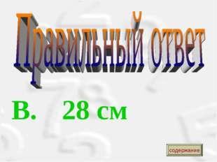 B. 28 см содержание