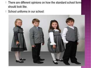 There are different opinions on how the standard school forms should look lik