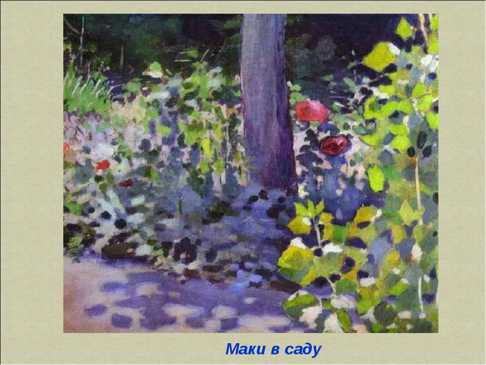 Маки в саду