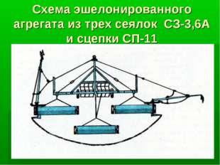 Схема эшелонированного агрегата из трех сеялок СЗ-3,6А и сцепки СП-11