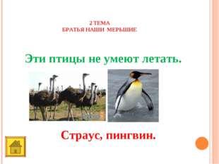2 ТЕМА БРАТЬЯ НАШИ МЕРЬШИЕ 10 баллов Эти птицы не умеют летать. Страус, пингв