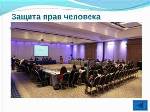 Защита прав человека Организация по безопасности и сотрудничеству в Европе(О
