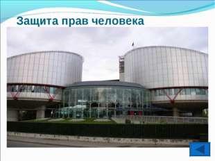 Защита прав человека Европейский Суд по правам человека и Комитет по правам ч