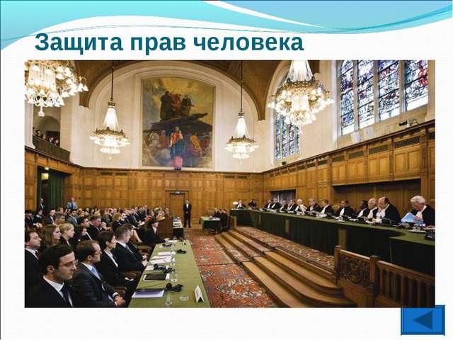 Защита прав человека Международный уголовный судв Гааге существует с 2002 г....