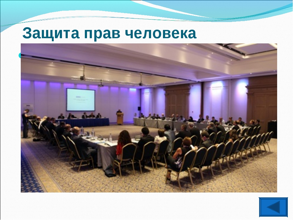 Защита прав человека Организация по безопасности и сотрудничеству в Европе(О...
