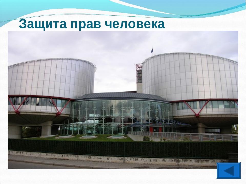 Защита прав человека Европейский Суд по правам человека и Комитет по правам ч...
