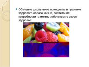 Обучение школьников принципам и практике здорового образа жизни, воспитание п