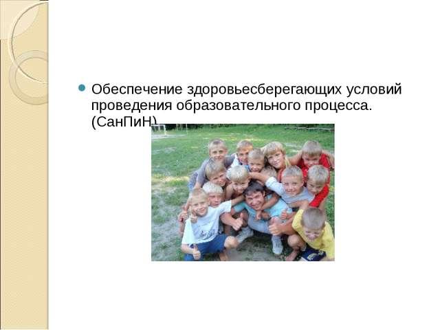 Обеспечение здоровьесберегающих условий проведения образовательного процесса....