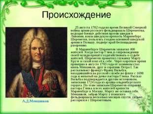 Происхождение А.Д.Меншиков 25 августа 1702года во время Великой Северной вой