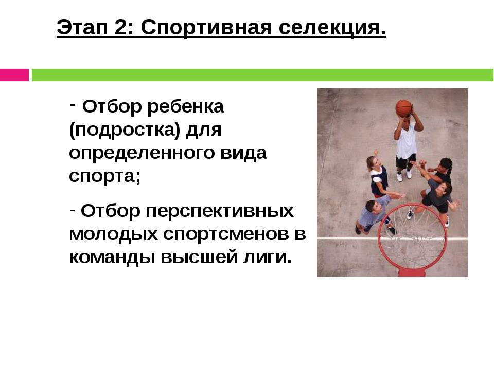 Этап 2: Спортивная селекция. Отбор ребенка (подростка) для определенного вида...