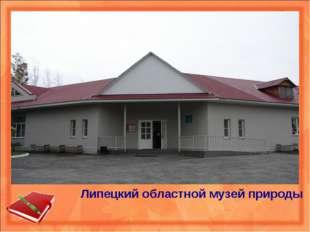 Липецкий областной музей природы