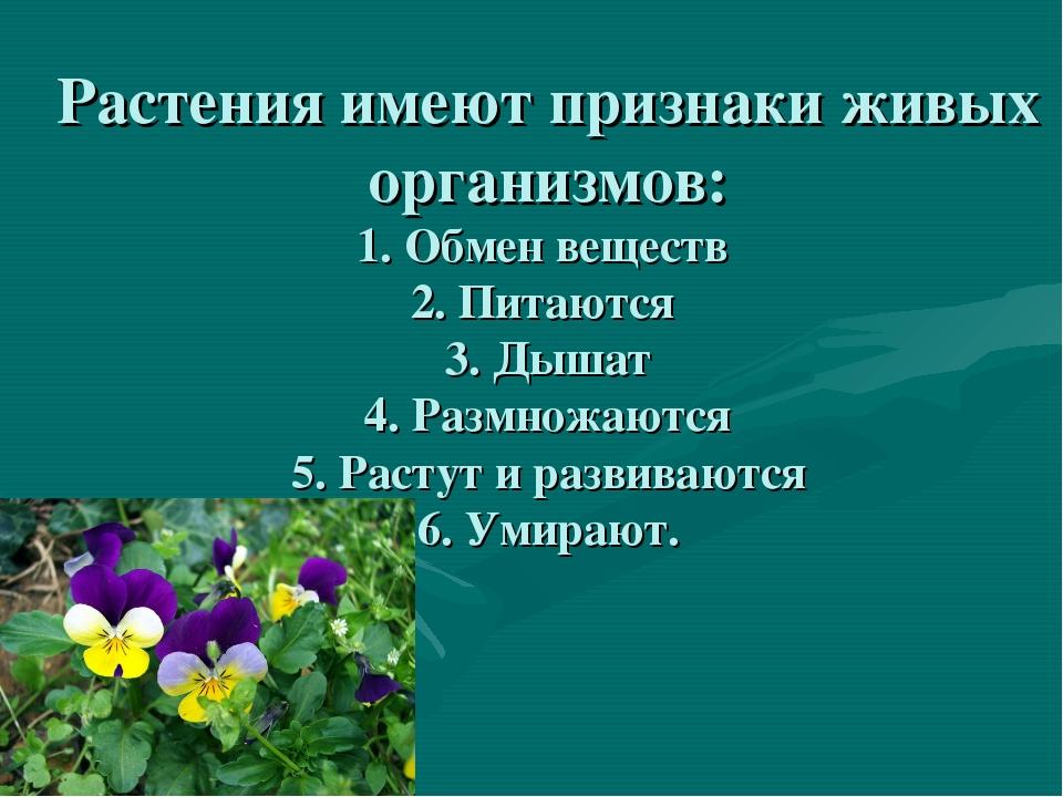 Растения имеют признаки живых организмов: 1. Обмен веществ 2. Питаются 3. Дыш...