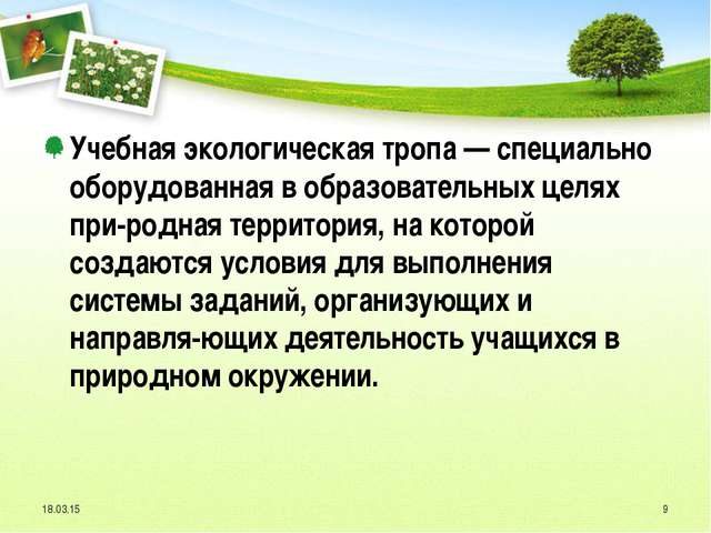 Учебная экологическая тропа — специально оборудованная в образовательных целя...