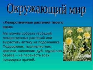 «Лекарственные растения твоего края» Мы можем собрать гербарий лекарственных