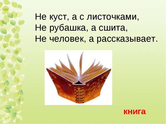 Не куст, а с листочками, Не рубашка, а сшита, Не человек, а рассказывает. книга