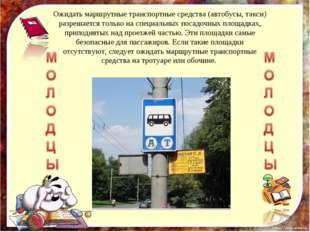 Ожидать маршрутные транспортные средства (автобусы, такси) разрешается только