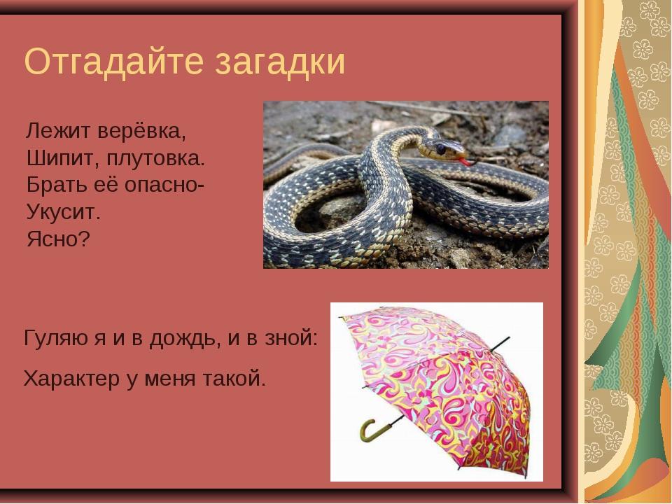 Отгадайте загадки Лежит верёвка, Шипит, плутовка. Брать её опасно- Укусит. Яс...