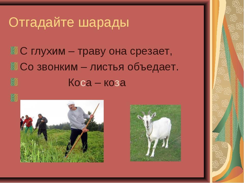 Отгадайте шарады С глухим – траву она срезает, Со звонким – листья объедает....
