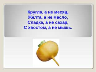 Кругла, а не месяц, Желта, а не масло, Сладка, а не сахар, С хвостом, а не мы
