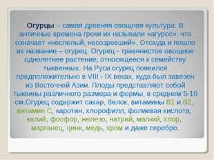 Огурцы – самая древняя овощная культура. В античные времена греки их называли