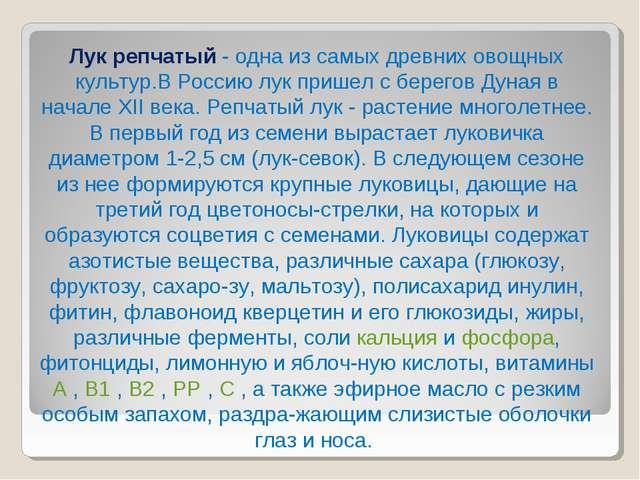 Лук репчатый - одна из самых древних овощных культур.В Россию лук пришел с бе...