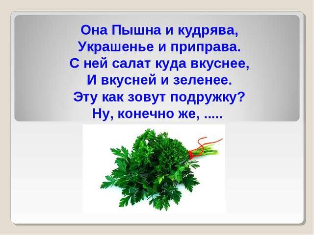 Она Пышна и кудрява, Украшенье и приправа. С ней салат куда вкуснее, И вкусне...