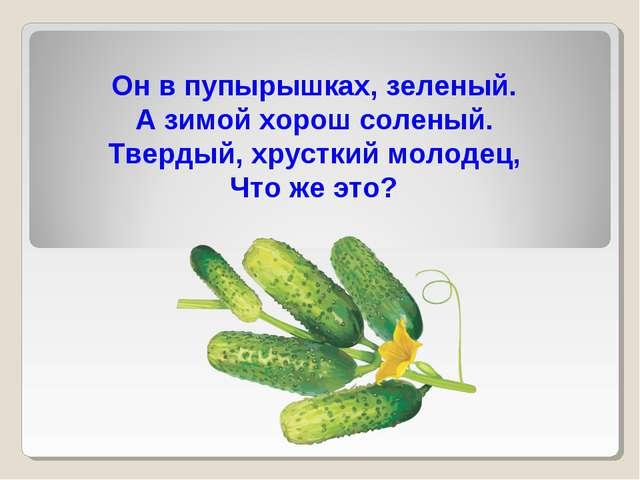 Он в пупырышках, зеленый. А зимой хорош соленый. Твердый, хрусткий молодец, Ч...