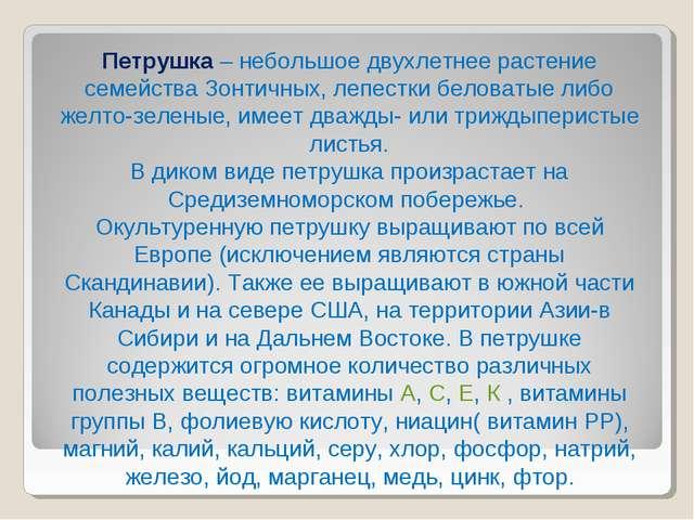 Петрушка – небольшое двухлетнее растение семейства Зонтичных, лепестки белова...