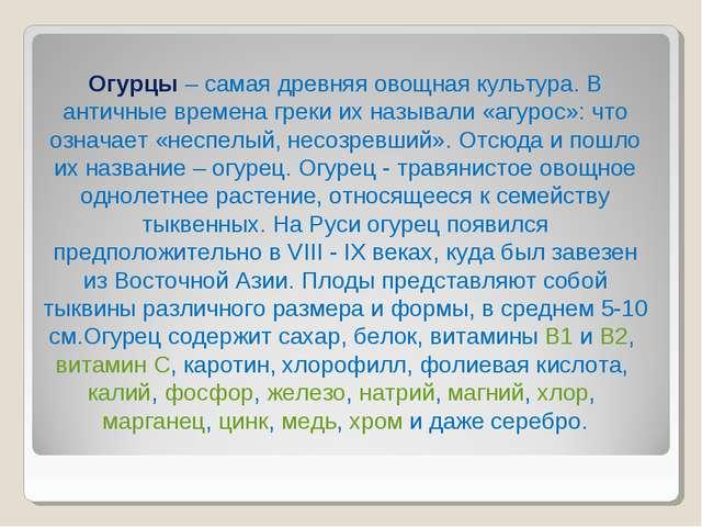 Огурцы – самая древняя овощная культура. В античные времена греки их называли...