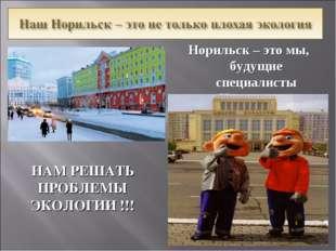 Норильск – это мы, будущие специалисты «Норильского Никеля»! НАМ РЕШАТЬ ПРОБЛ
