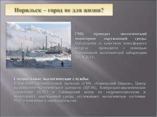 Специальные экологические службы: Управление промышленной экологии «ГМК «Нор