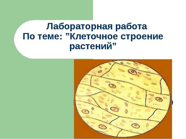 """Лабораторная работа По теме: """"Клеточное строение растений"""""""