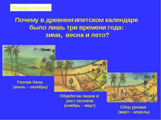 Почему в древнеегипетском календаре было лишь три времени года: зима, весна и...