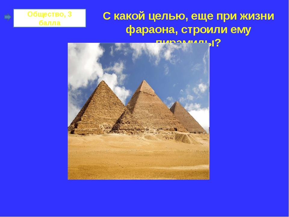 Общество, 3 балла С какой целью, еще при жизни фараона, строили ему пирамиды?