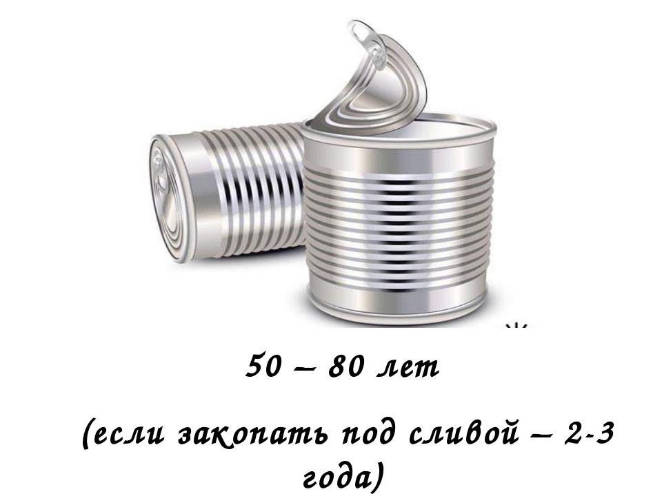 50 – 80 лет (если закопать под сливой – 2-3 года)