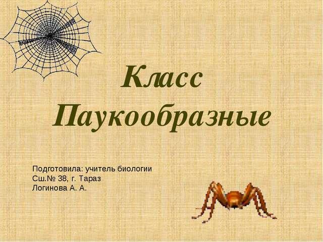 Класс Паукообразные Подготовила: учитель биологии Сш.№ 38, г. Тараз Логинова...