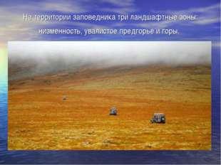 На территории заповедника три ландшафтные зоны: низменность, увалистое предго