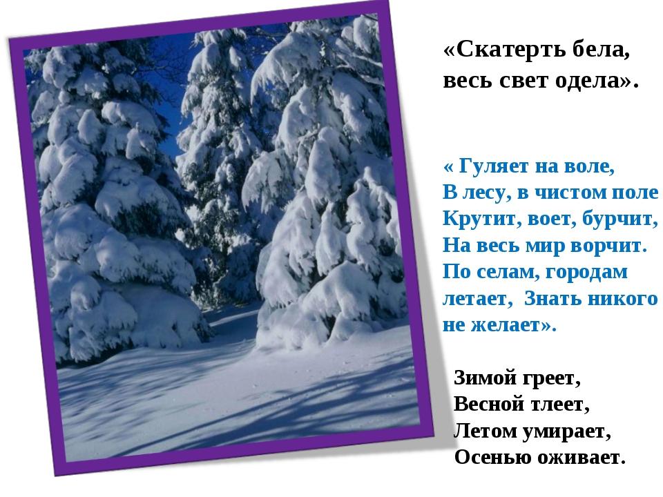 «Скатерть бела, весь свет одела». « Гуляет на воле, В лесу, в чистом поле Кру...