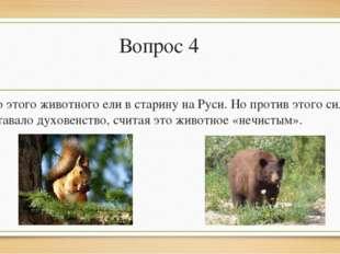 Вопрос 4 Мясо этого животного ели в старину на Руси. Но против этого сильно в