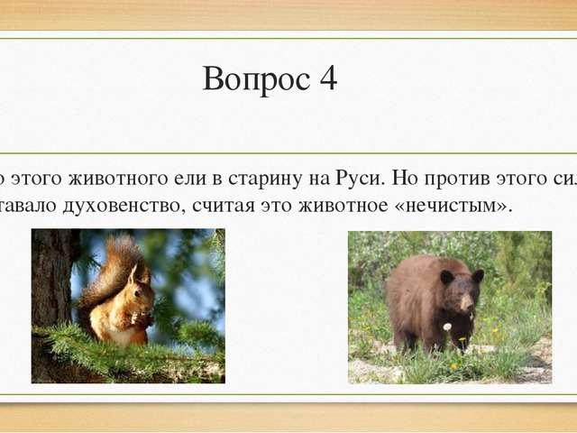 Вопрос 4 Мясо этого животного ели в старину на Руси. Но против этого сильно в...